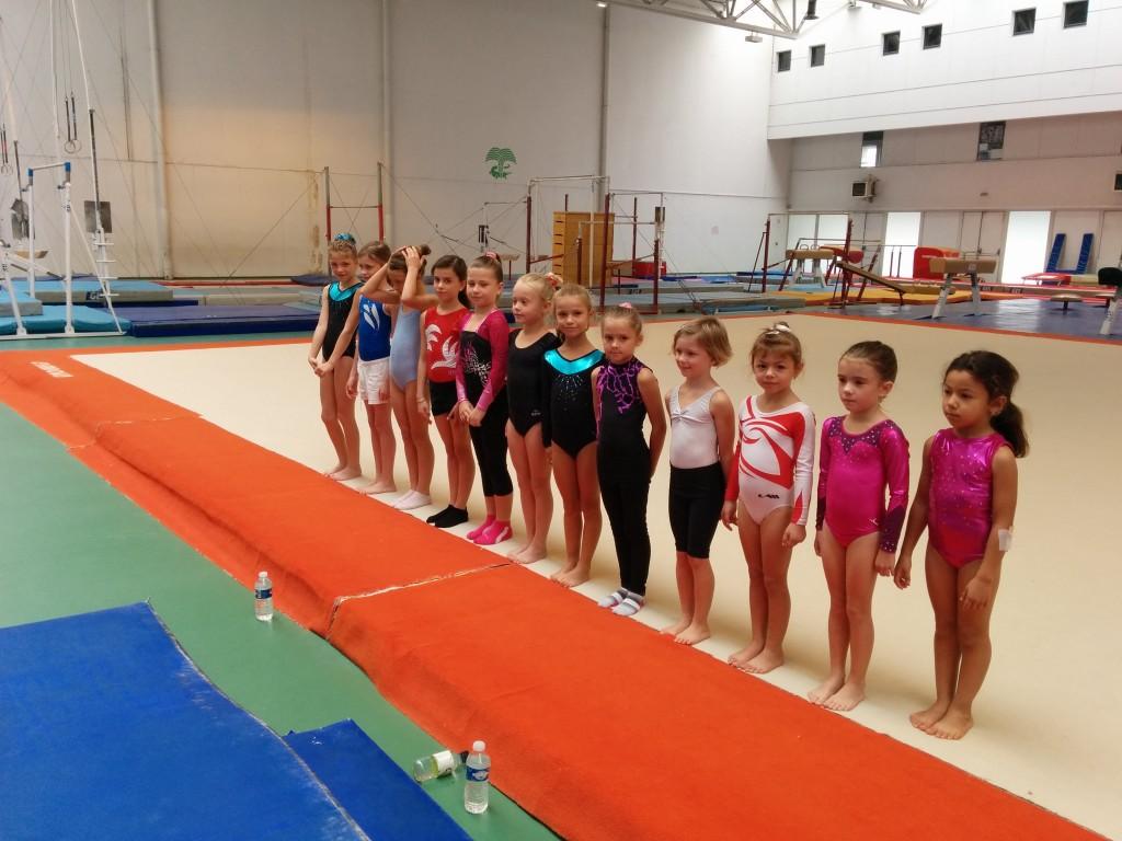 Les gymnastes du rassemblement départemental